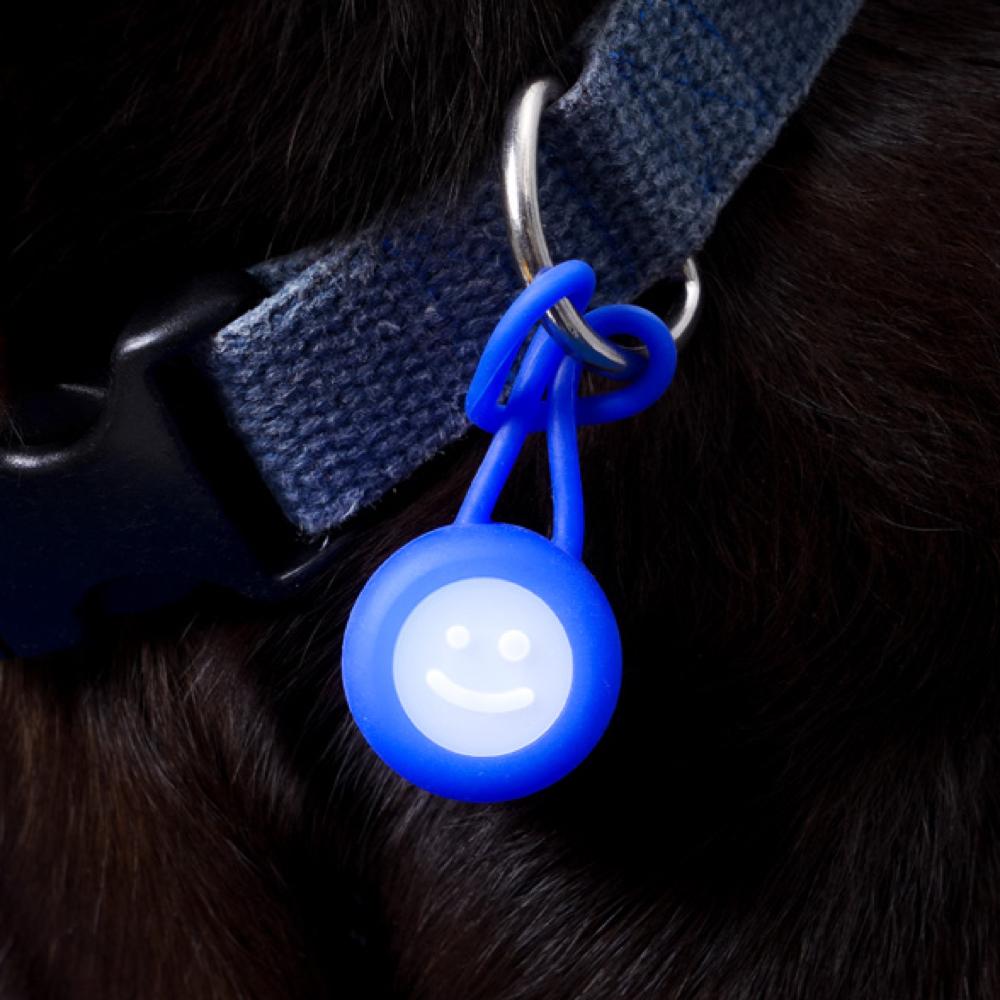 베이컨(BACON) 고아웃클럽 LED 산책 라이트